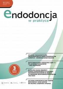 Endodoncja w praktyce wydanie nr 3/2017